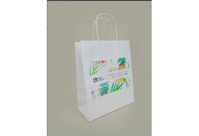 Logo printed shopping paper bags - small quantities