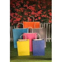 SALE!! Paper shopping bags - twisted handles